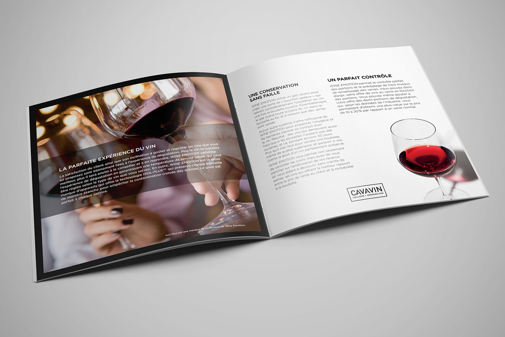 brochure2_cavavin